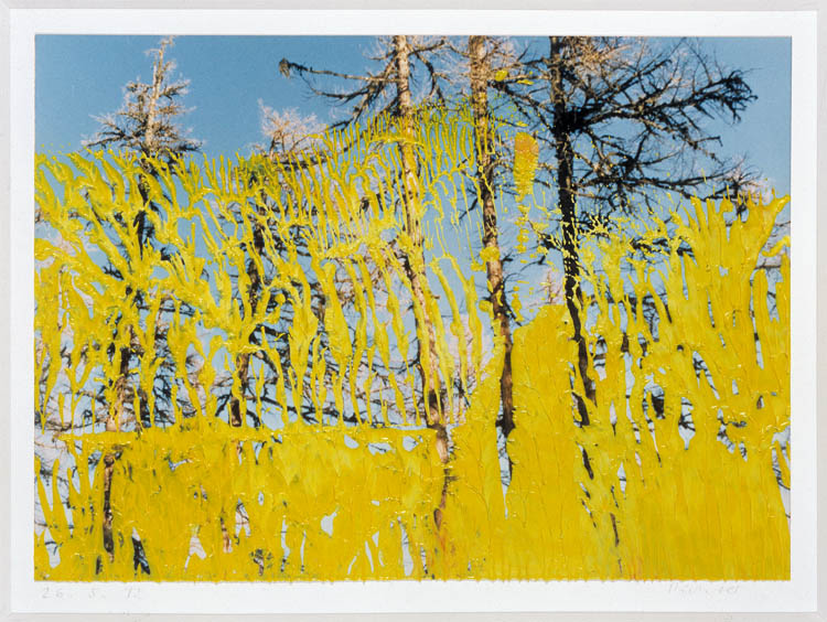 Gerhard Richter Abstrakt 26.5.92 1992. Deutsche Bank Collection. ©