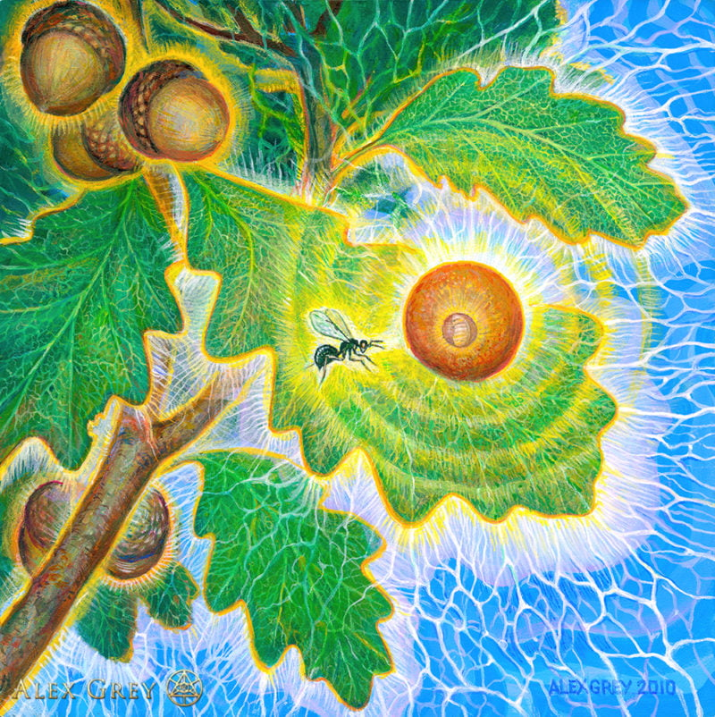 alex grey gall wasp surrealism canvas art picture print wall silk poster 24x24 china mainland