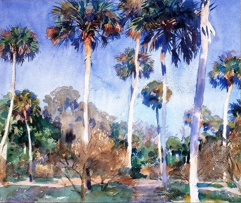 cd0ebffc palms 1917 2