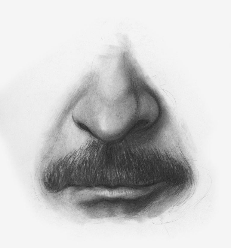 draw facial features lee hammond artists network drawing facial hair demo 3 768x827 1