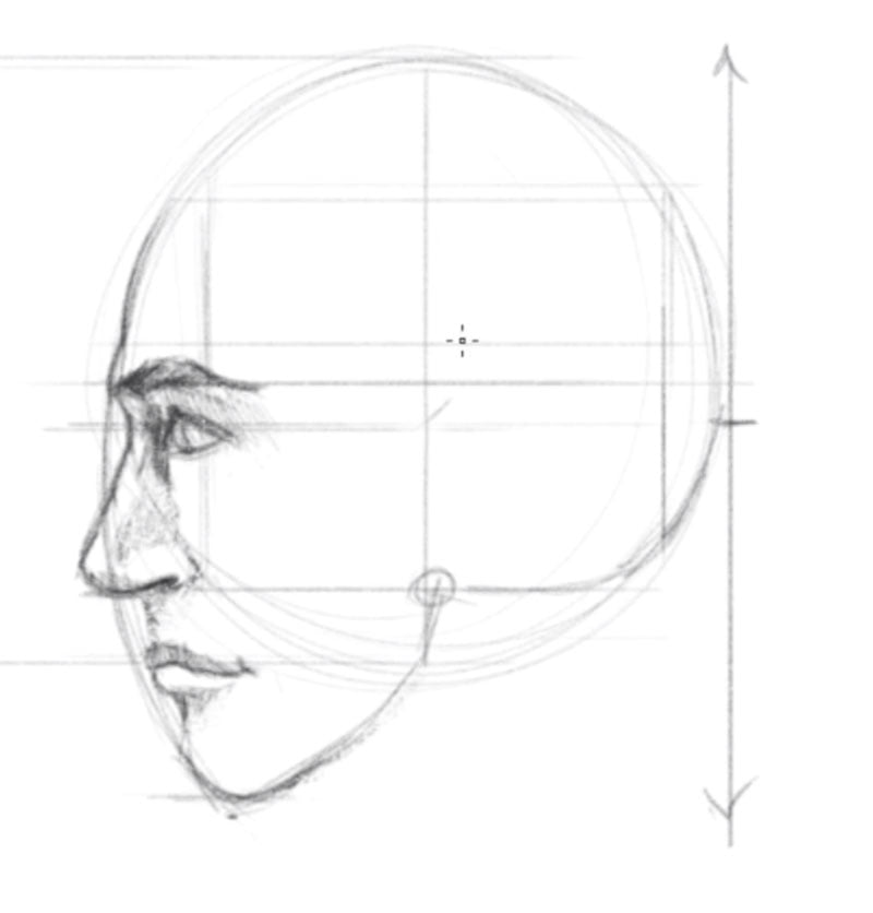 how to draw a face side view step 6 shade features