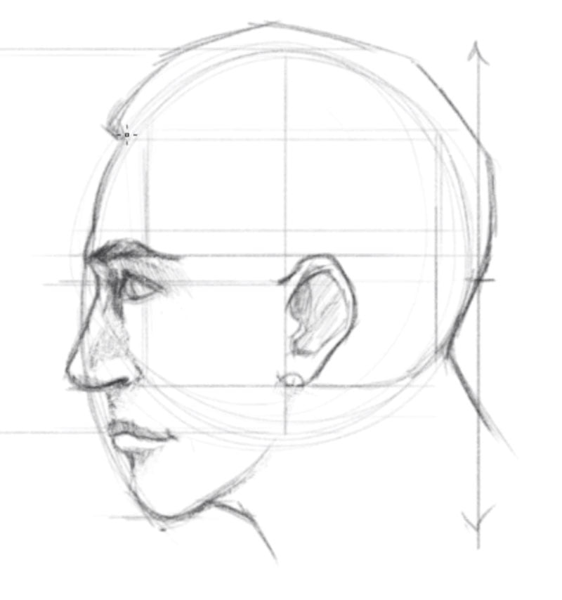 how to draw a face side view step 7 draw hairline and neck
