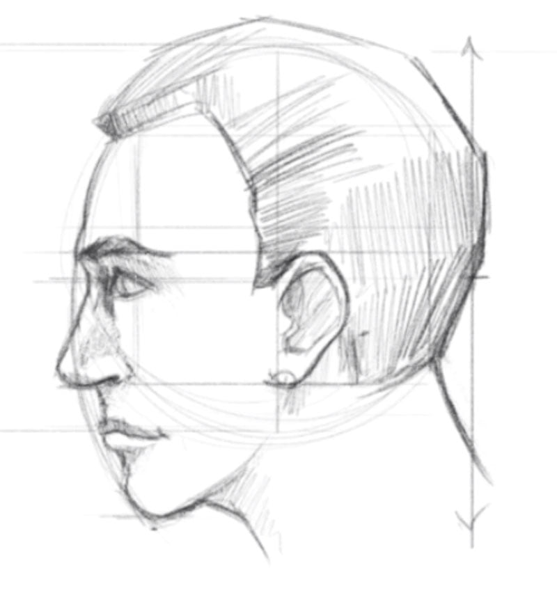 how to draw a face side view step 8 shade hair