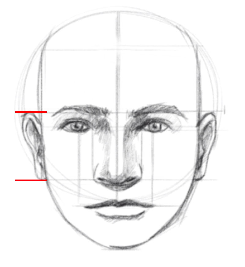 how to draw a face step eight draw the ears
