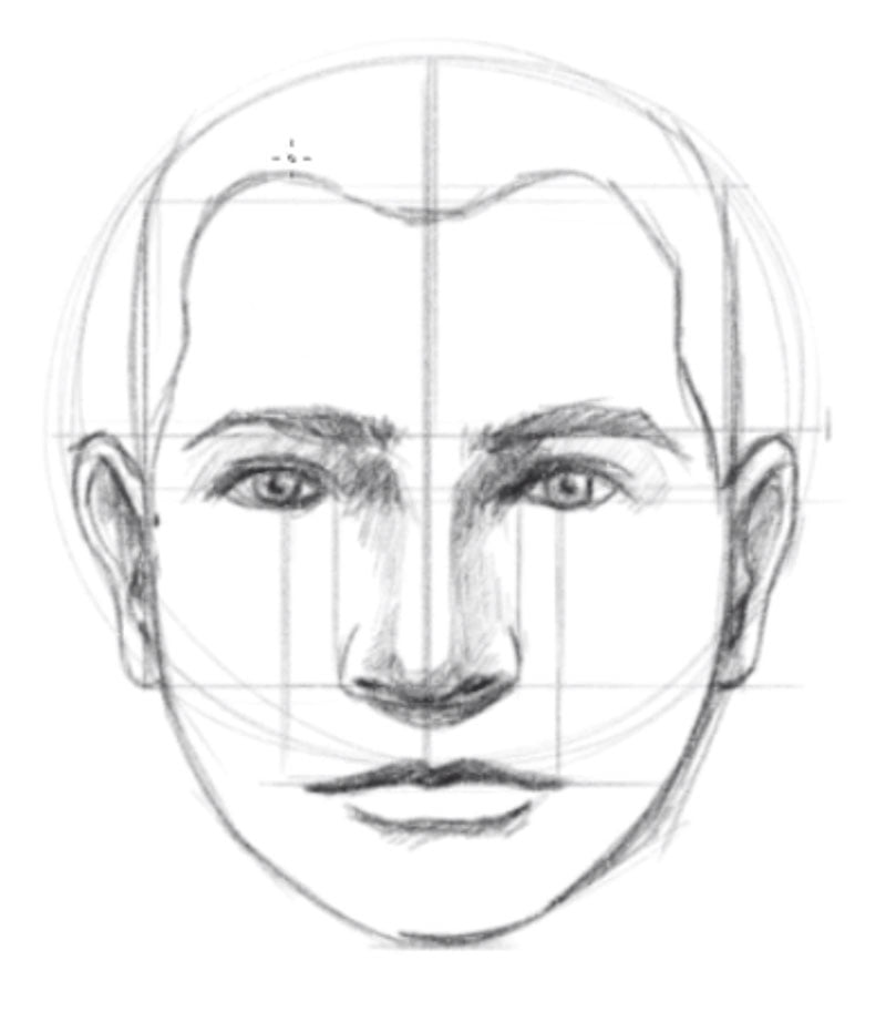 how to draw a face step nine lower hairline